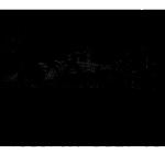 Logo Transparent Copyright
